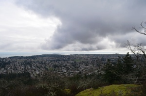 View from Mt. Doug