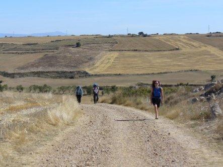 Walking the Camino