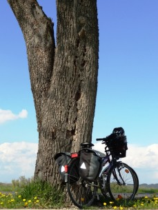 Biking the Austrian section of the Danube