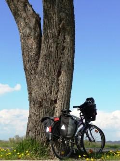 Biking the Austrian section of the Danube