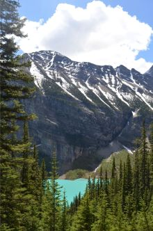 Lake Louise from the hike to Lake Agnes