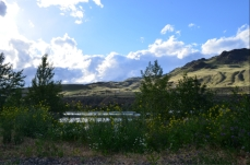 Steelhead Campground - my site!