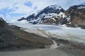 Ice shield and Athabasca Glacier
