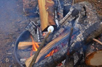 Mmmm finally I get to roast marshmallows