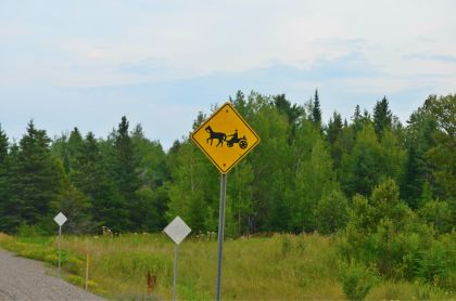 Warning - horse & buggies on the road