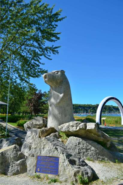 Wiarton Willie!