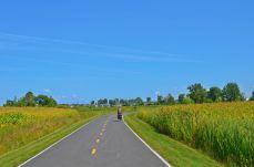 Our bike path!