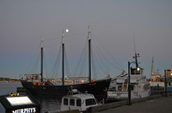 Beautiful harbour