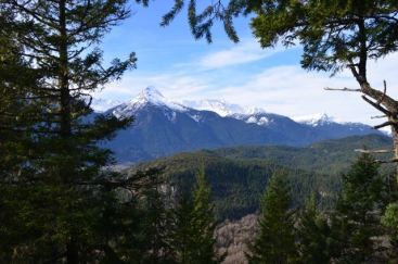 View from Cheakamus Trail