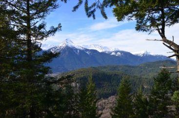 View from Cheakamus Trail
